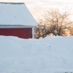 1503_snowanddeer_003