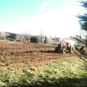 Small Farm  / Hobby Farm / Farm